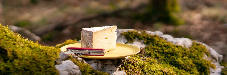 La tomme de montagne, de quoi en faire tout un fromage